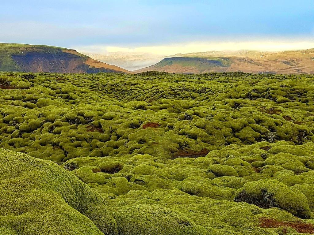 Dél Izland látnivalók - Eldhraun lávamező