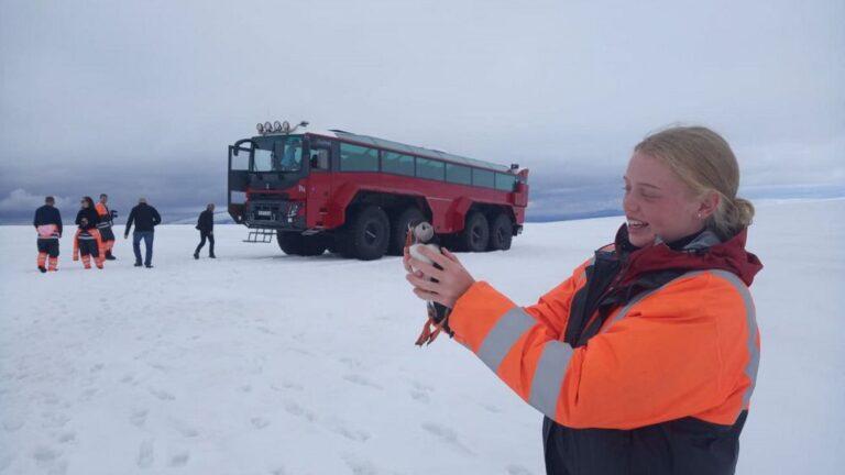 elveszett lunda Izland